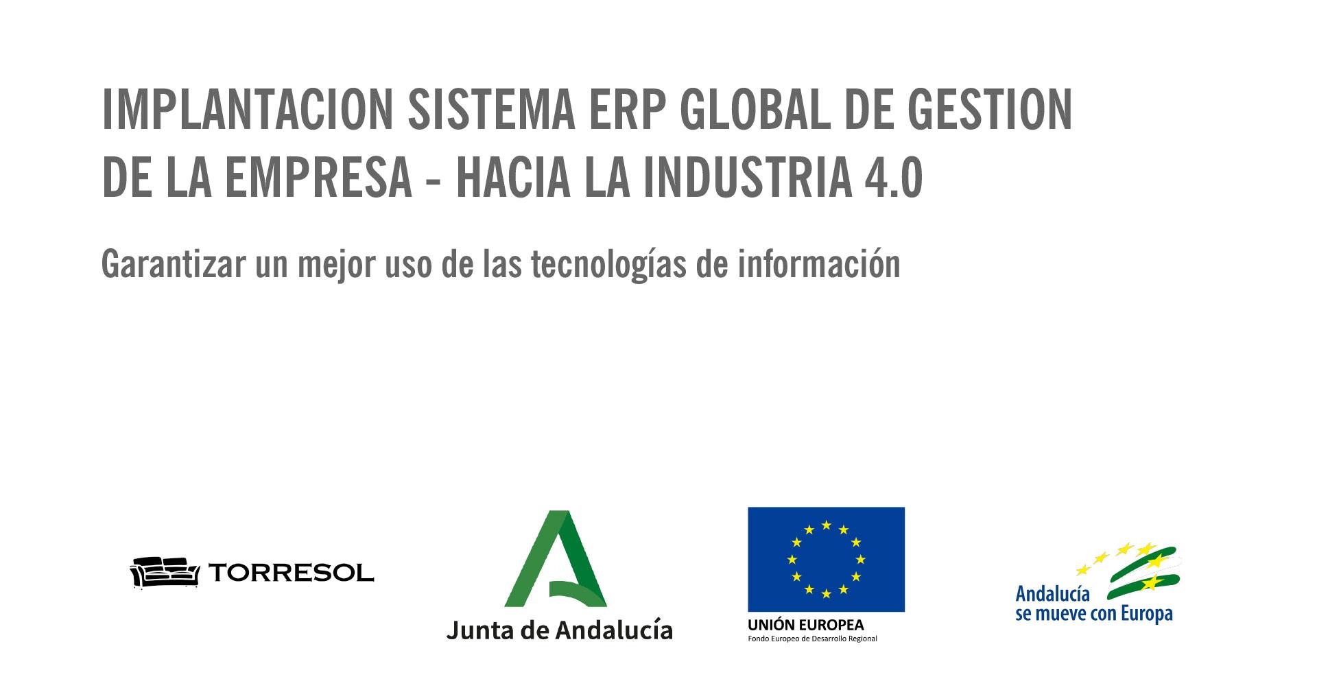 Implantación sistema ERP Global de Gestión de la empresa.